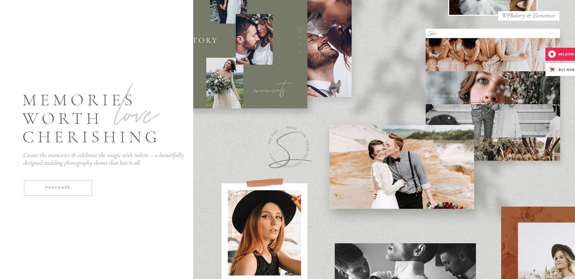 Solene-beste-wordpress-themes-voor-fotografie