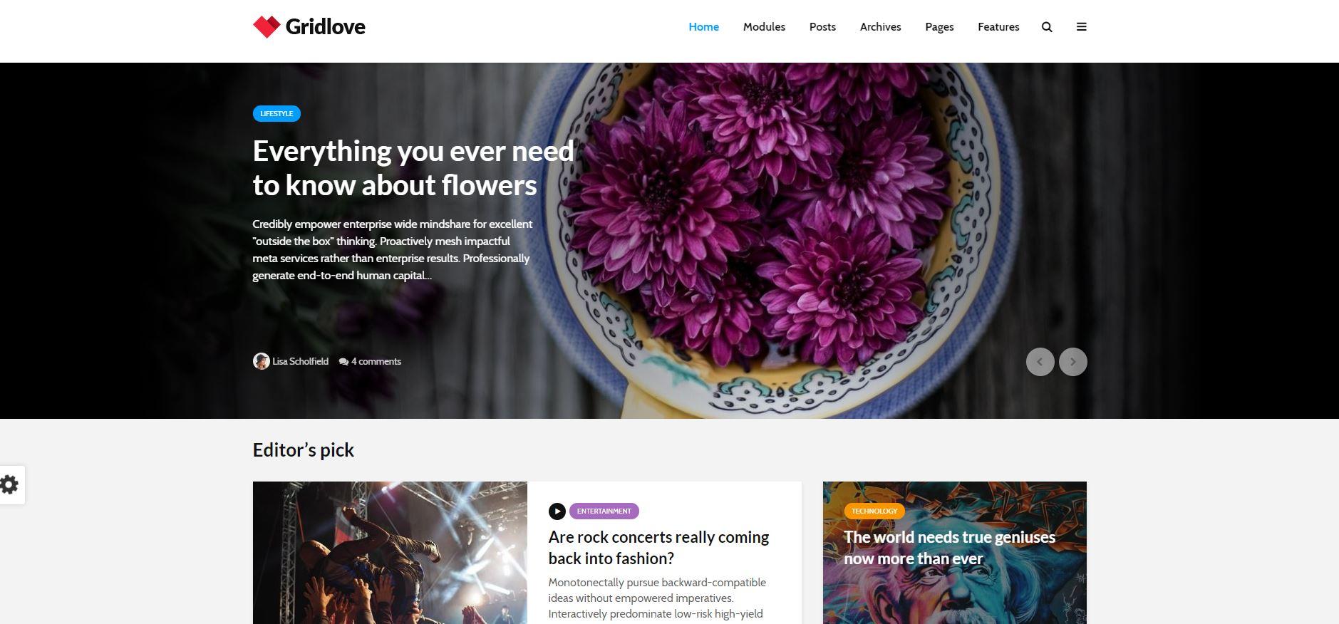 beste-wordpress-themes-bloggers