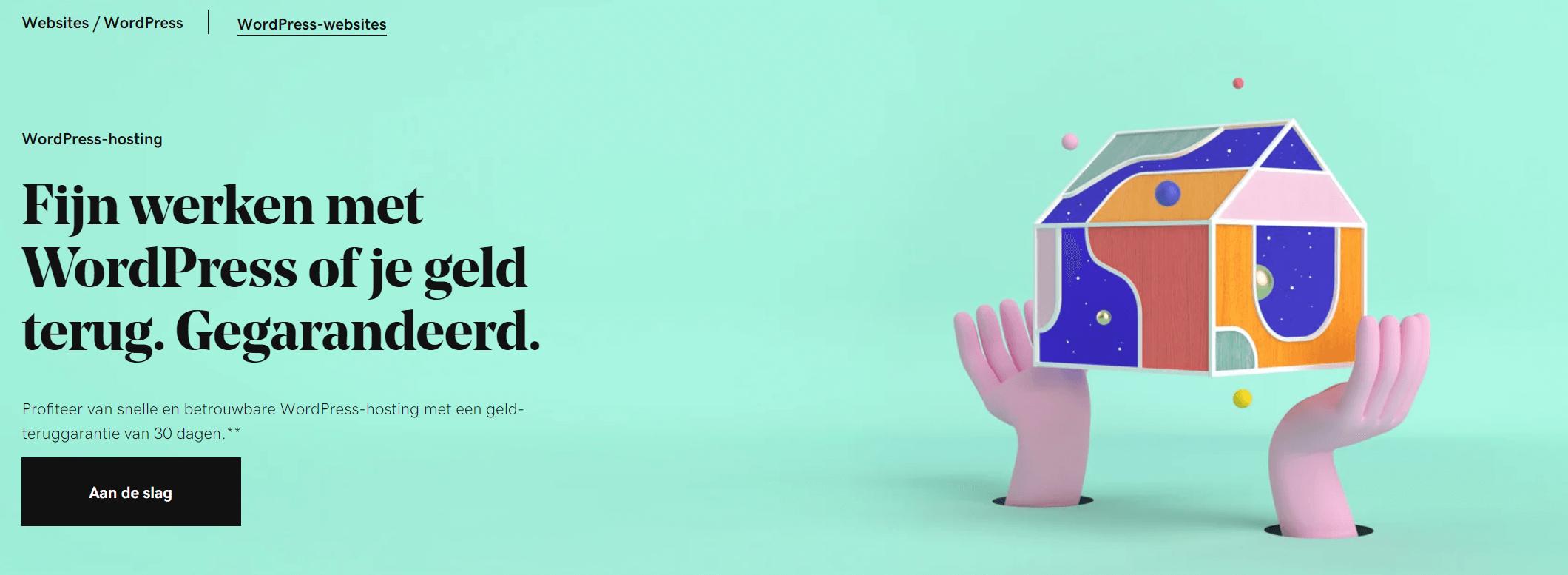 GoDaddy-hosting-nederland